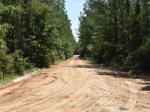 30-012 Flomaton-Welka Tract 6 : Flomaton : Escambia County : Alabama