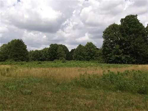 80 Acre Hunting Property - Laclede : Falcon : Laclede County : Missouri