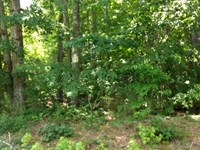 Perry Graveyard Road : Siler City : Chatham County : North Carolina