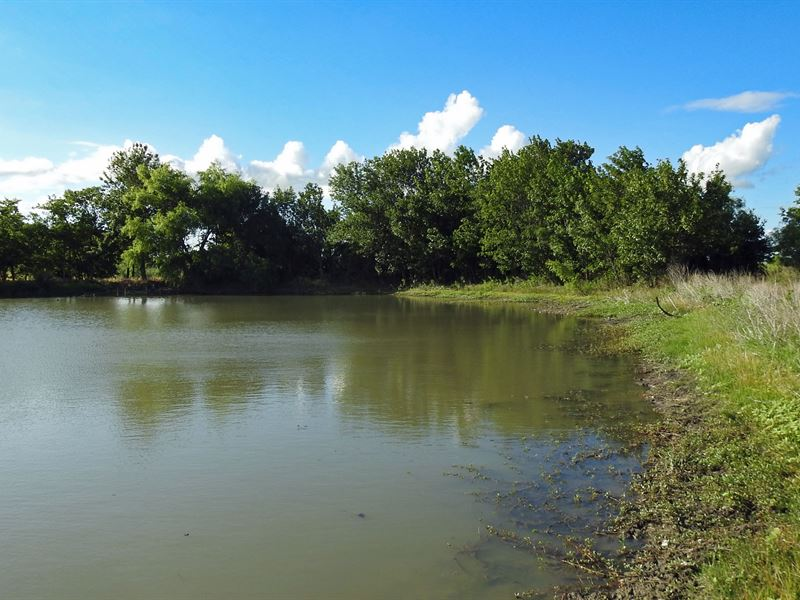 11.12 Ac, Cr 114, Milam County : Rogers : Milam County : Texas