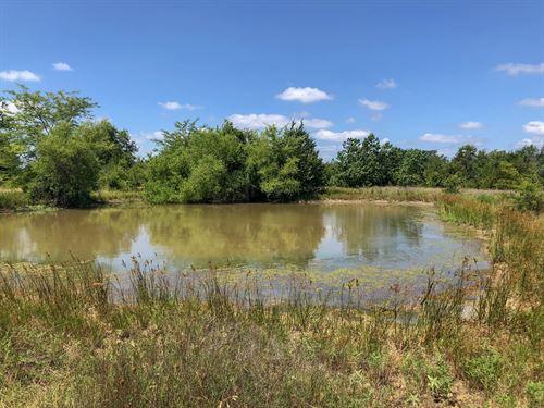 18.5 Acres In Hopkins County : Dike : Hopkins County : Texas