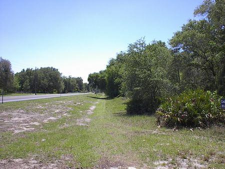 Owner Finance, 22 Acres,  Paved Rd : Hudson : Pasco County : Florida