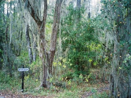 Owner Fin, 38 Ac Income Potential : Webster : Sumter County : Florida