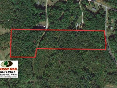 11.46 Acres of Hunting And Timber : Roxboro : Person County : North Carolina