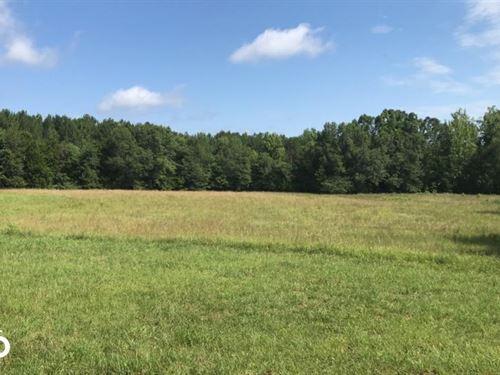 Greenville Hunting And Homesite Lan : Honea Path : Greenville County : South Carolina