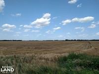 78 Acres Premium Dryland : Sedgwick : Harvey County : Kansas