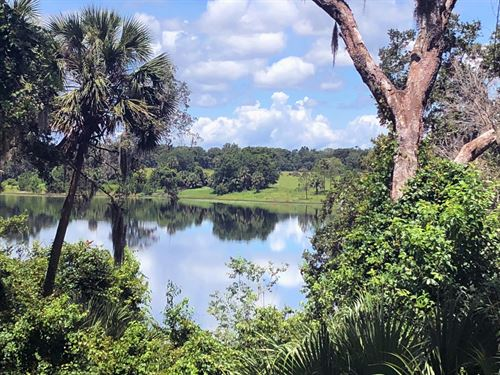 Three Lakes Ranch : De Leon Springs : Volusia County : Florida