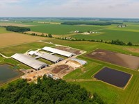 Ohio Dairy Dispersal Auction : Mark Center : Defiance County : Ohio