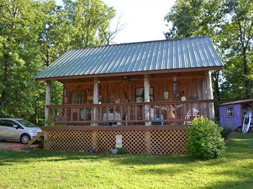 10 Surveyed Acres & Rustic Cabin : Saint Joe : Searcy County : Arkansas