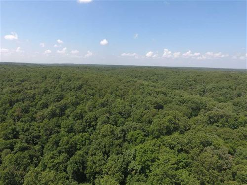 110 Acres Next To Missouri State : Linn Creek : Camden County : Missouri