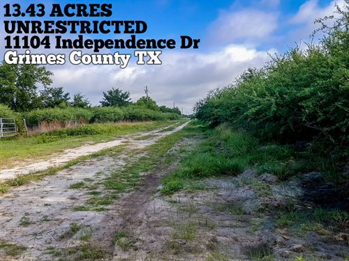 13.43 Acres In Grimes County : Bedias : Grimes County : Texas