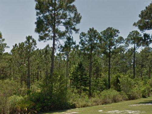 Escambia County, Fl $21,000 Neg : Pensacola : Escambia County : Florida