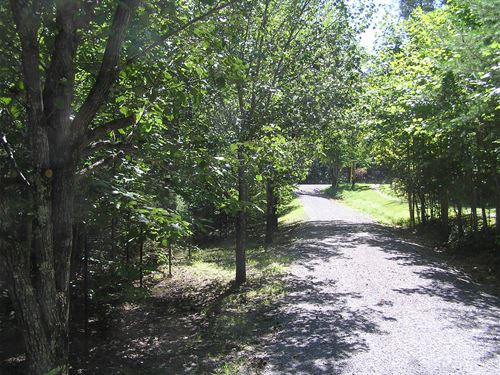 Lot With A Lake View : Dunlap : Sequatchie County : Tennessee