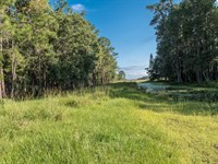 212 Acres Of Beautiful Deen Still : Polk City : Polk County : Florida