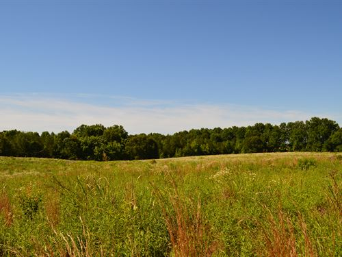 15 Acre Commercial Site : Greer : Spartanburg County : South Carolina
