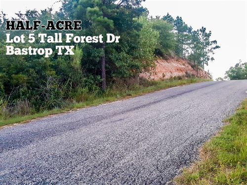 .47 Acres In Bastrop County : Bastrop : Texas