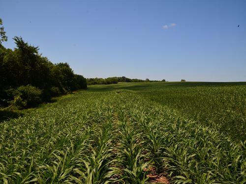 Whispering Meadows Hunt Tract : Oskaloosa : Jefferson County : Kansas