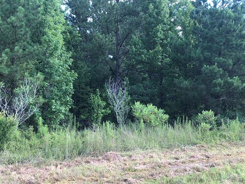 3 Acre Land Tract In Laurens County : East Dublin : Laurens County : Georgia