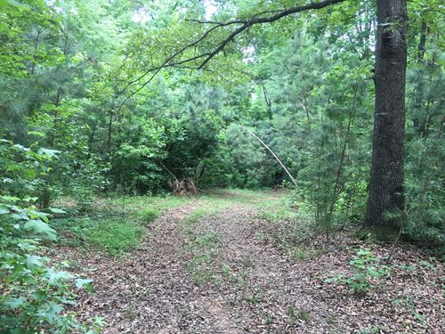 40 Acres With Old Rock Fireplace : Buchanan : Haralson County : Georgia