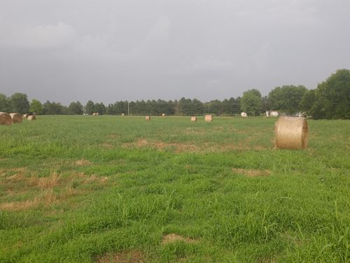 40 Acres For Sale Hay Meadow : Altus : Johnson County : Arkansas