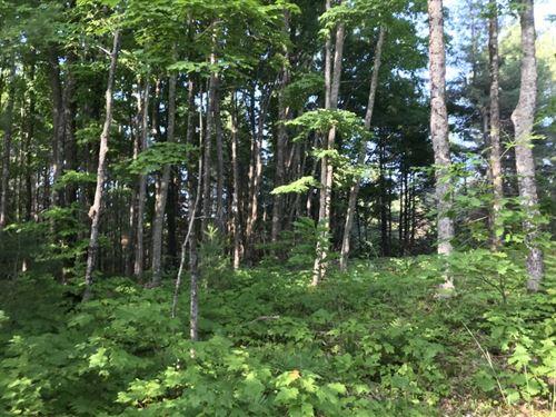 Misery Bay Road, Weber Pond : Toivola : Houghton County : Michigan