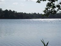 Waterfront Lot, 72, Black Warrior : Akron : Hale County : Alabama