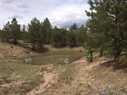Alpine Bluffs : Guffey : Fremont County : Colorado