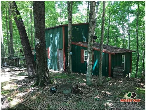 26.5 Acres With Hunting Cabin : Columbia : Adair County : Kentucky