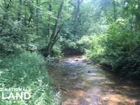 Carr Creek Hunting & Timber Tract : Ashland : Clay County : Alabama