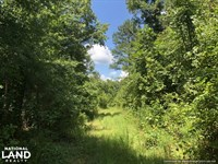 Timber Investment And Hunting Tract : Kosciusko : Attala County : Mississippi