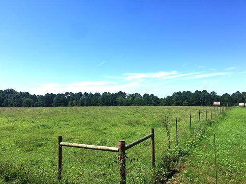 Improved Pasture - Morgan County : Buckhead : Morgan County : Georgia