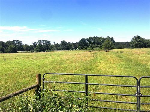 Fully Fenced - Morgan County : Buckhead : Morgan County : Georgia