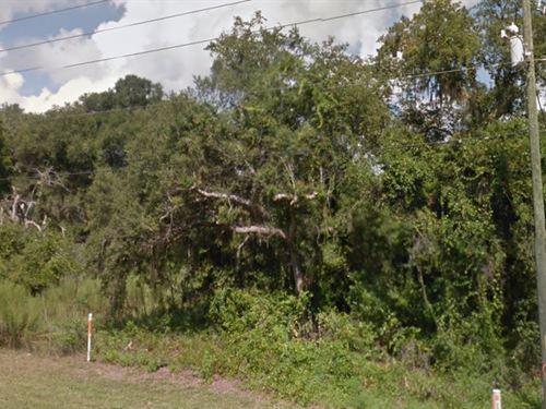 Citrus County, Fl $30,000 Reduced : Hernando : Citrus County : Florida