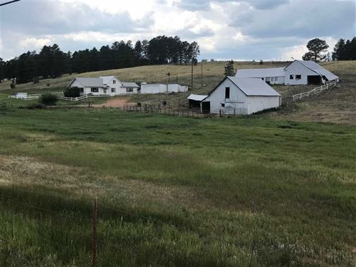 Red Tail Ranch : Woodland Park : Teller County : Colorado