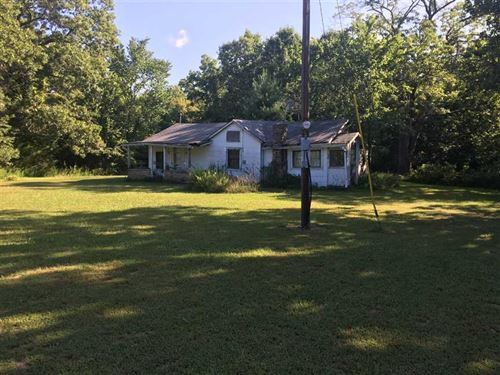 Cabin And 86 Acres In Phelps Co : Edgar Springs : Phelps County : Missouri