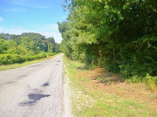 69.69 Acres Home Site/Hunting : Summit : Amite County : Mississippi