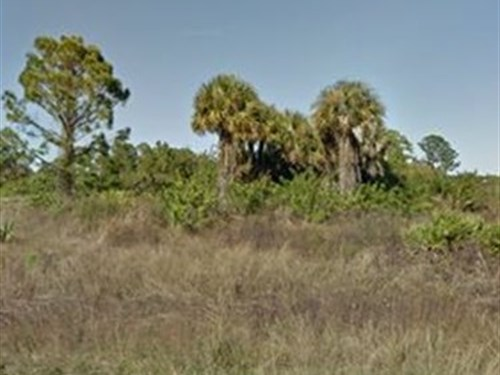 Lee County, Fl $9,500 : Lehigh Acres : Lee County : Florida