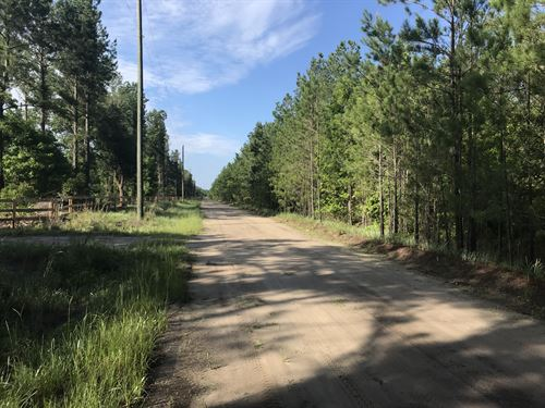 Vic Waters Road : Townsend : McIntosh County : Georgia