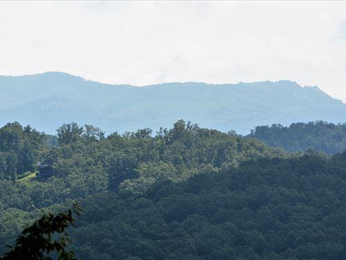 South Skyland Dr Mountain Acreage : Marietta : Greenville County : South Carolina