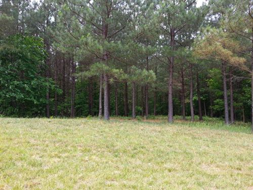 4.87+/-Acres Located In The Ridges : South Pittsburg : Marion County : Tennessee