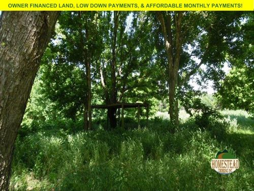 Level Lot With Access To Riverfront : Ravenden : Lawrence County : Arkansas