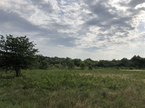 170 Acres Farm And Timberland : Turner : Phillips County : Arkansas