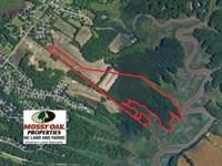 55 Acres of Waterfront Multipurpos : Williamsburg : James City County : Virginia