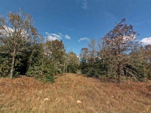 Marion County, Fl $30,000 Neg : Summerfield : Marion County : Florida
