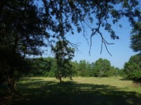 84.07 Acres - Richland County, Sc : Columbia : Richland County : South Carolina