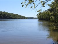 120 Acres, Fairfield County, Sc : Great Falls : Fairfield County : South Carolina