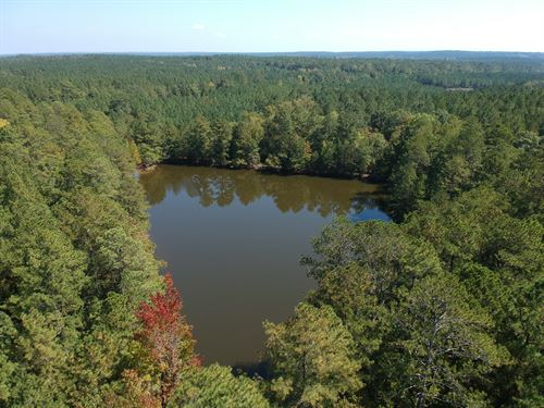 166.19 Acres, Newberry County, Sc : Kinards : Newberry County : South Carolina