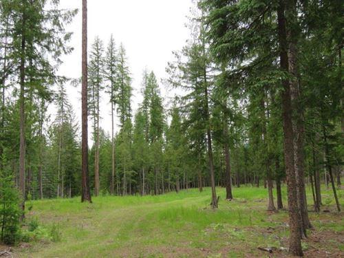 Harrels 5 Acres : Troy : Beaverhead County : Montana