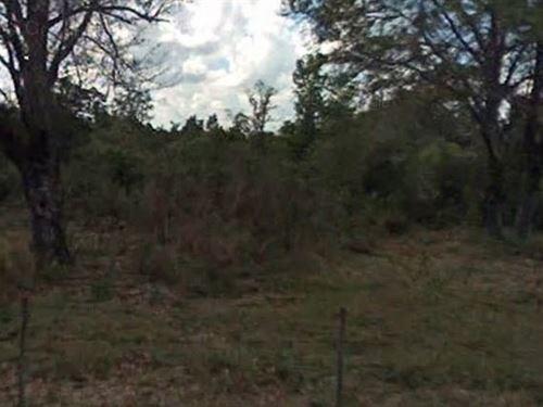 Polk County, Fl $9,900 Reduced : Winter Haven : Polk County : Florida