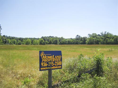 Borders The National Forest : Kennard : Houston County : Texas